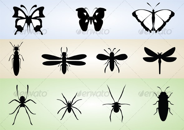Butterflies and insects - Miscellaneous Characters