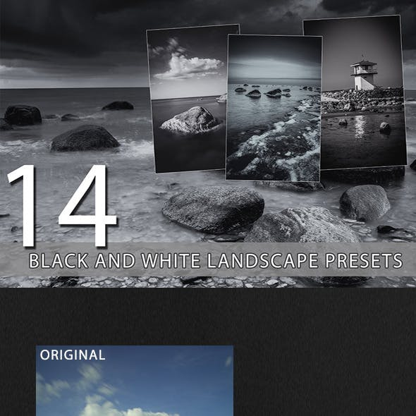 14 Black and White Landscape Presets