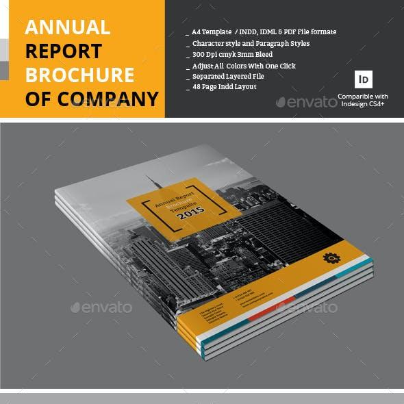 Annual Report Brochure of Company