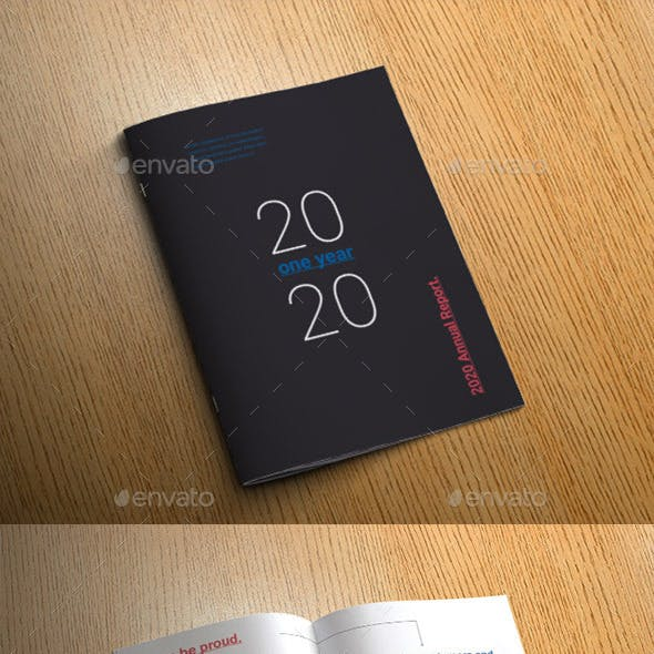 Roboto Annual Report
