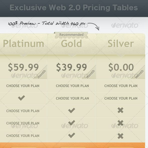 Exclusive Web 2.0 Pricing Tables