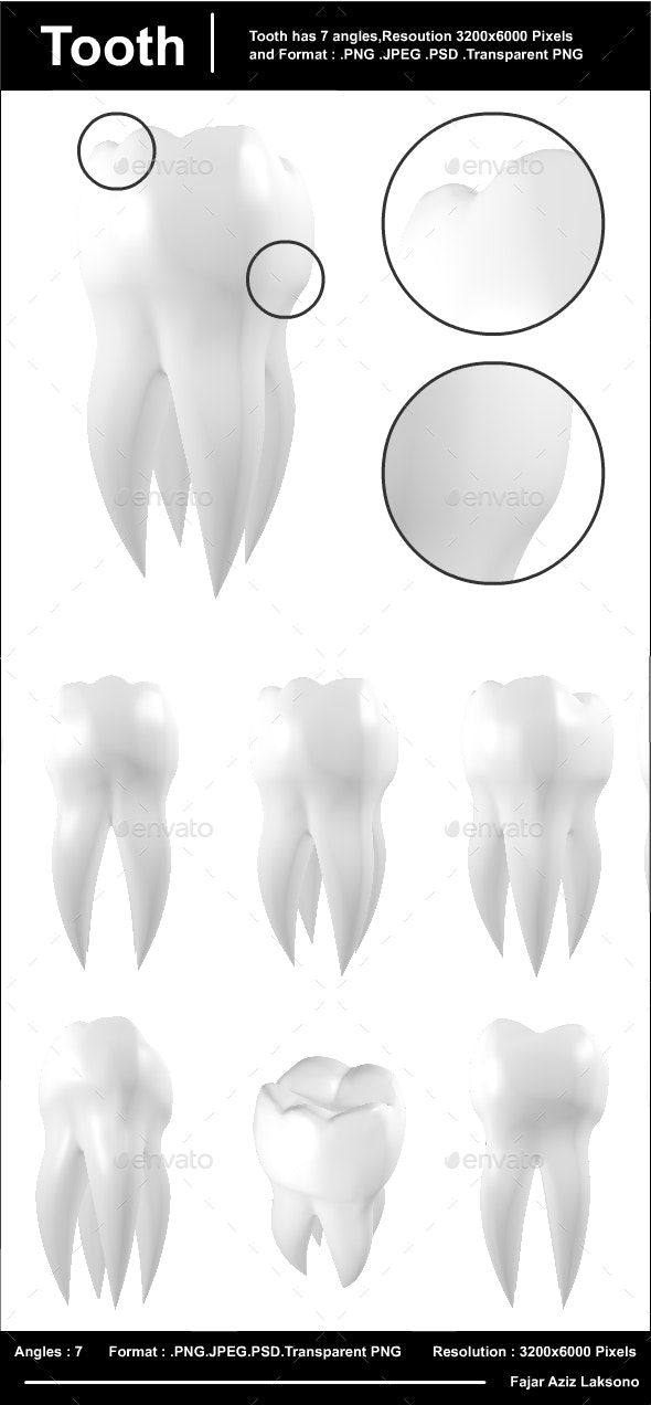 Tooth - Objects 3D Renders