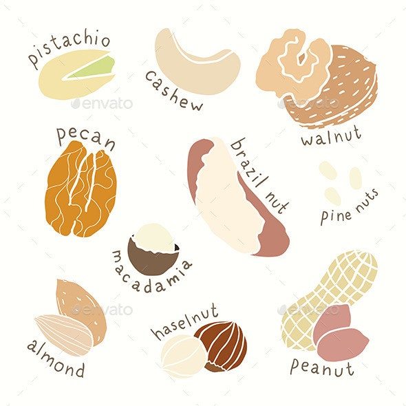 Different Nuts Set - Food Objects