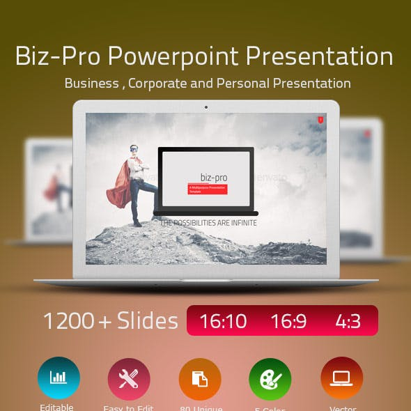 Biz-Pro Power Point Presentation