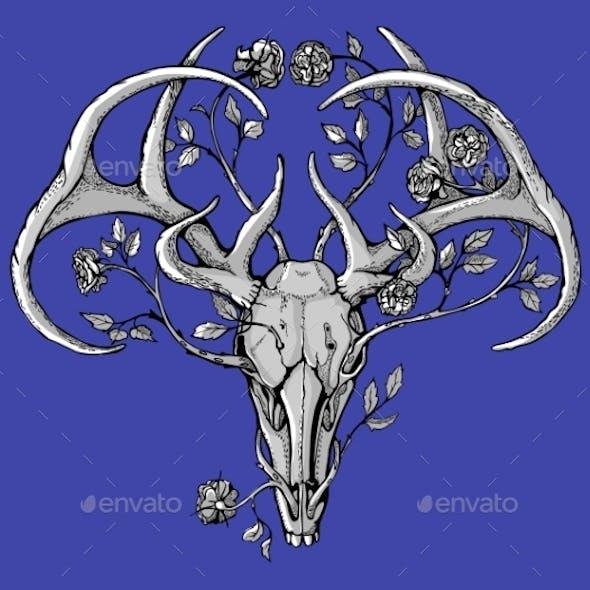 Black and White Deer Skull with Horns