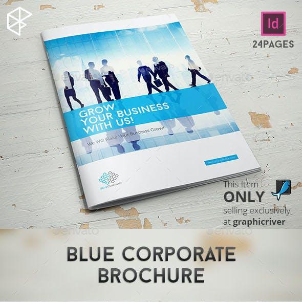 Blue Corporate Brochure