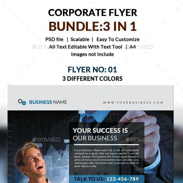Corporate Flyer Bundle 3 in 1