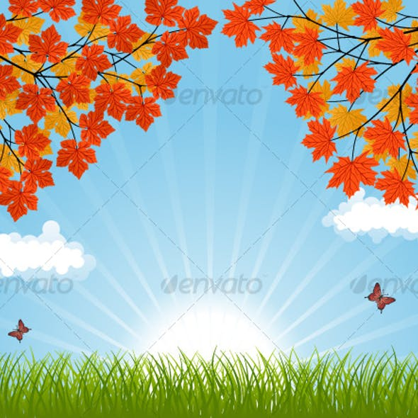 Nature background with a autumn landscape
