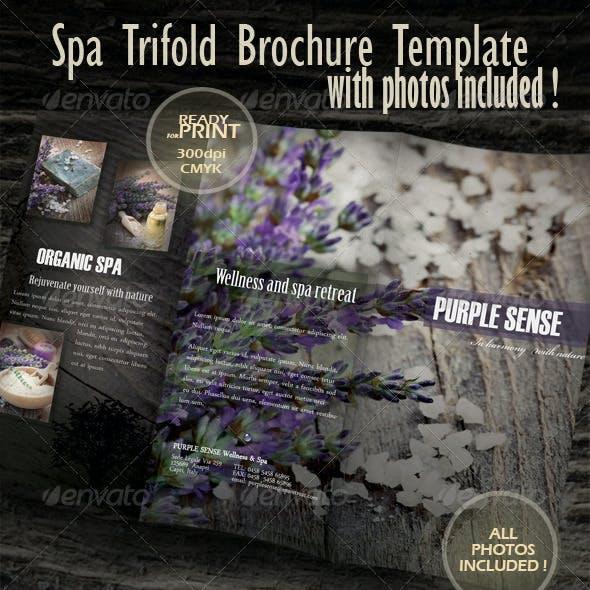 Spa & Wellness Trifold Brochure