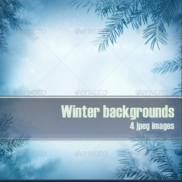 Winter Background with Frozen Trees