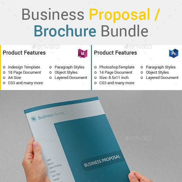Business Proposal / Brochure Bundle