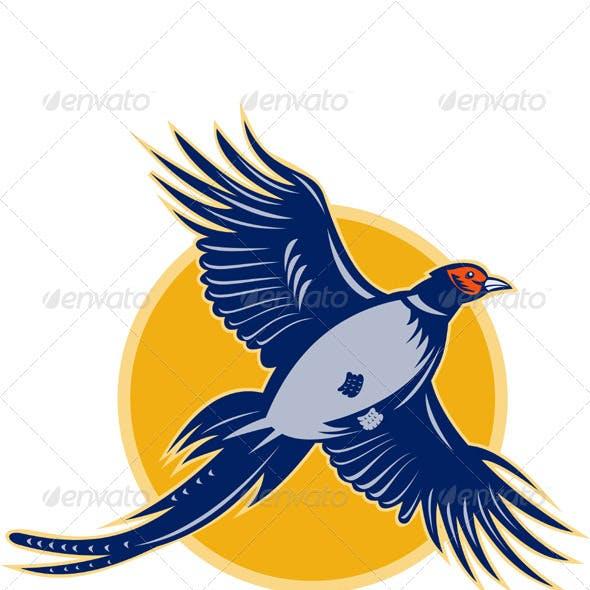 Pheasant Bird Flying Up Retro Style