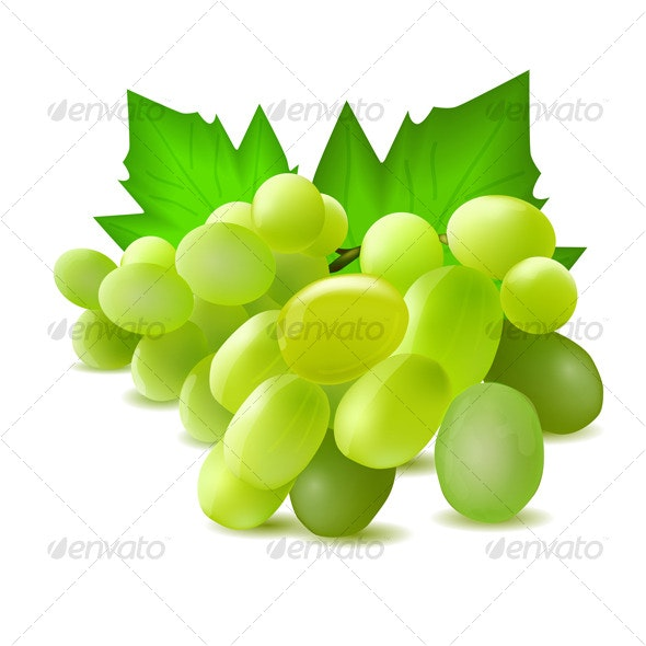 Fresh green grapes - Food Objects