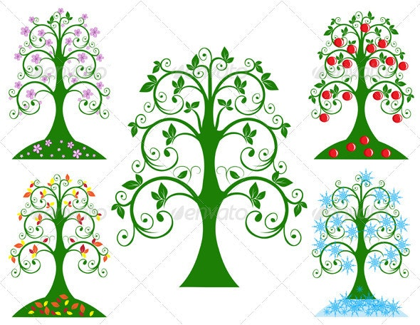 Four Seasonal Tree - Seasons Nature