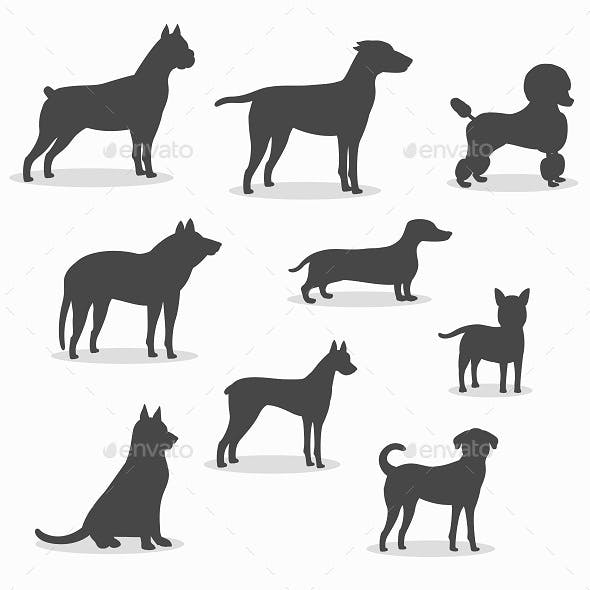 Dogs Icons Set of Different Breeds