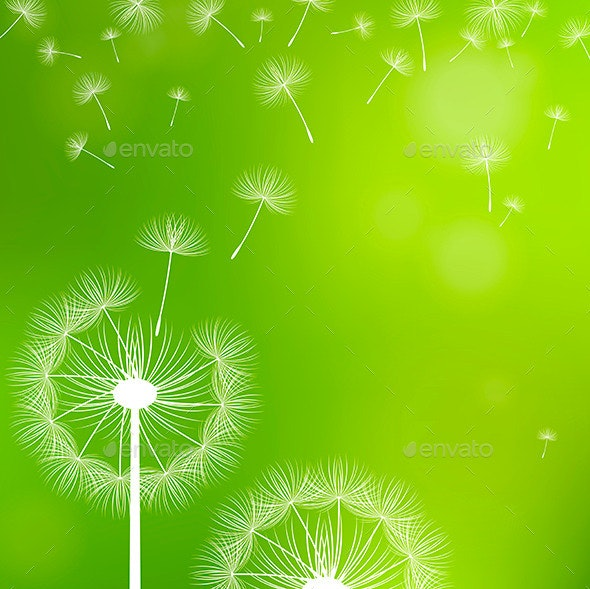 Dandelions on a Green Background - Backgrounds Decorative