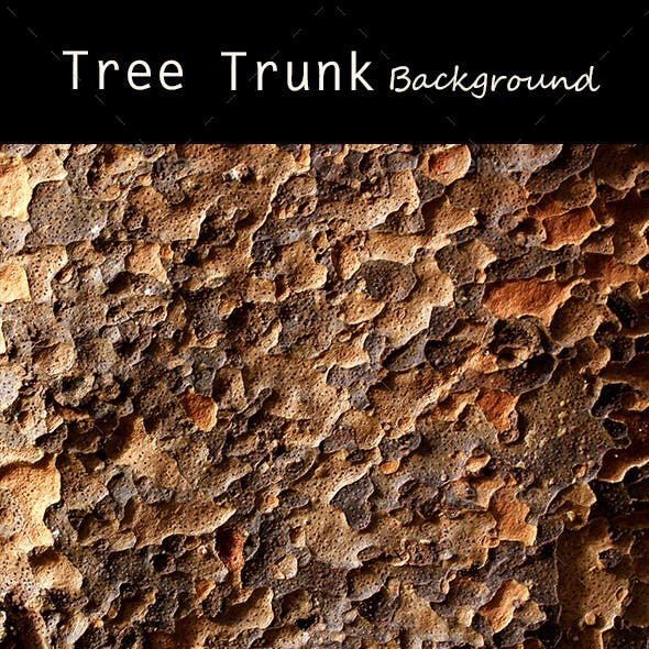 Tree Trunk Texture 0108