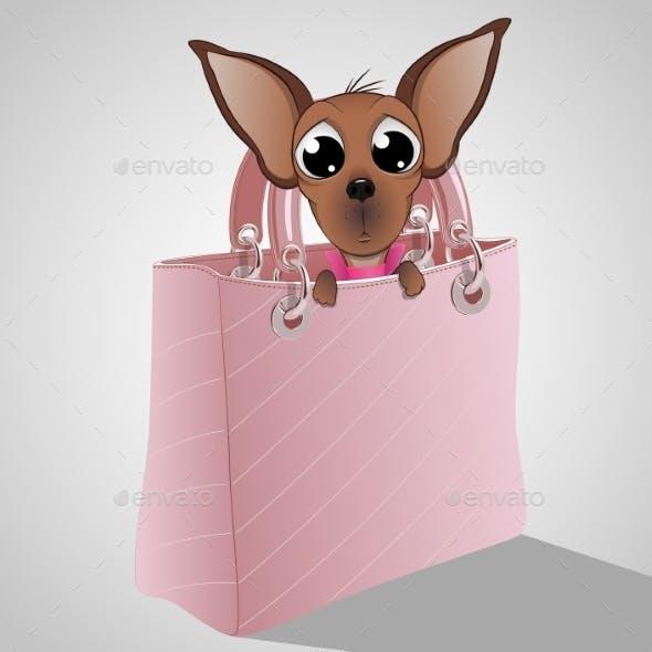 Dog in a Handbag