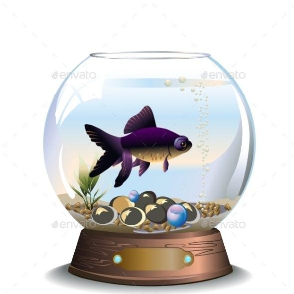 Round Aquarium with Fish