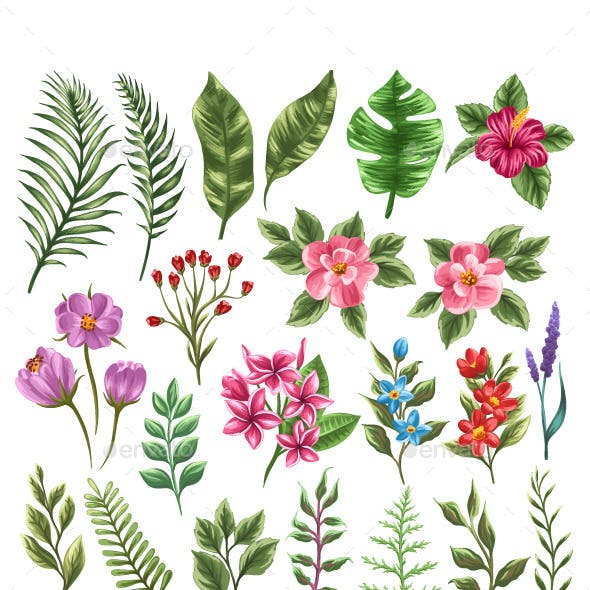 Collection of Flowers and Leaves