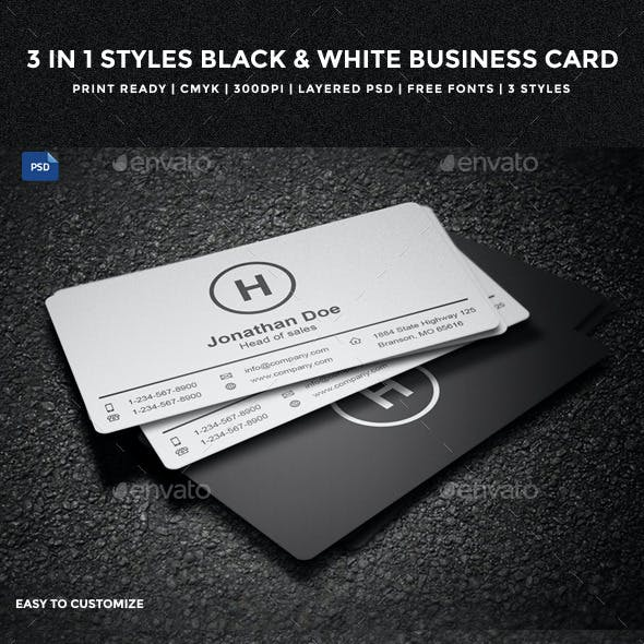 3 in 1 Styles Black & White Business Card - 14