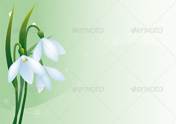 Snowdrops Background - Backgrounds Decorative