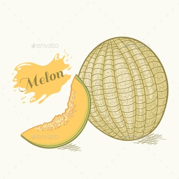 Hand Drawn Melon