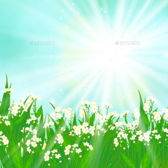 Card with Small White Flowers - Flowers & Plants Nature