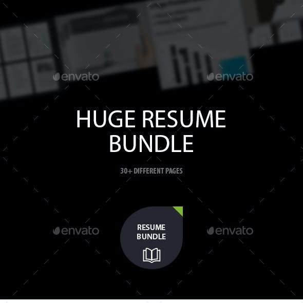 Resume Bundle - A Huge Set