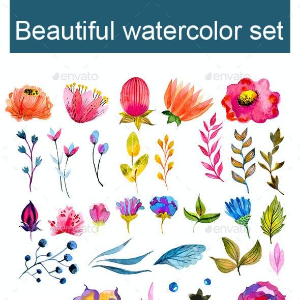 Big Watercolor Floral Collection