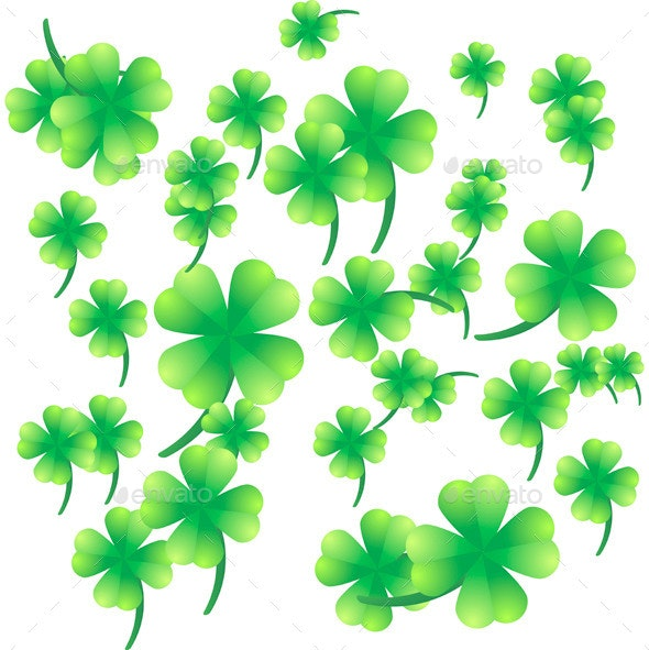 Leaves of Clover on a White Background - Flowers & Plants Nature
