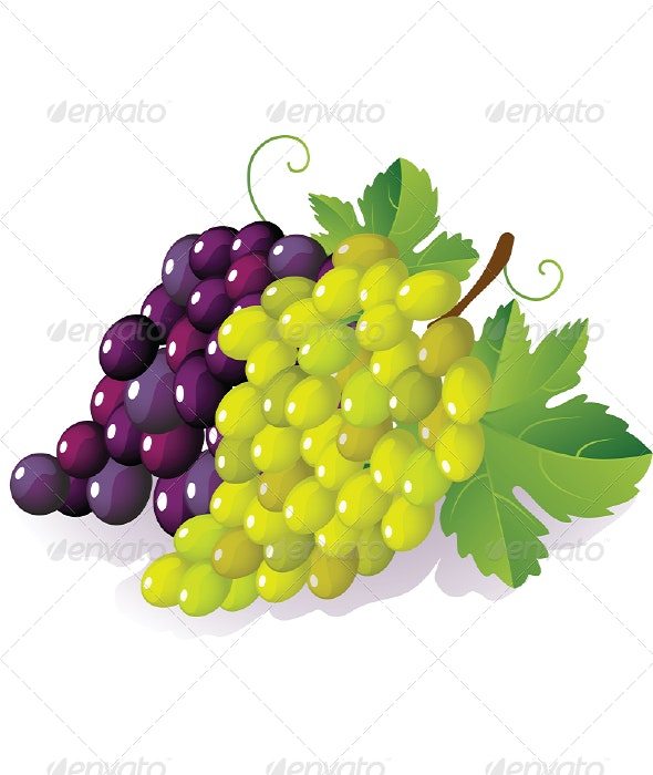 Grape - Food Objects