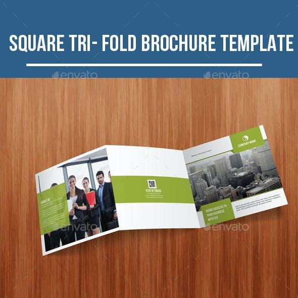 Square Tri-Fold Business Brochure