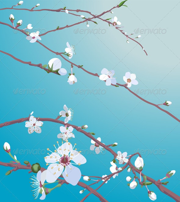 Beautiful blossom background - Backgrounds Decorative