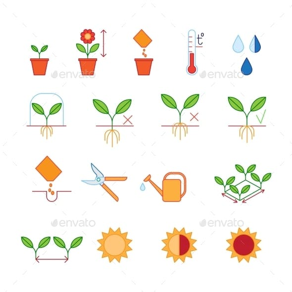 Seeding and Planting Instructions