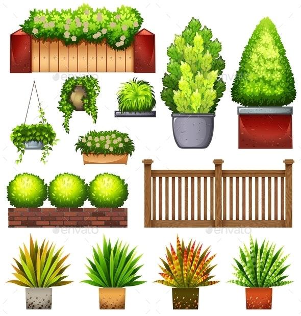 Set Plants - Flowers & Plants Nature