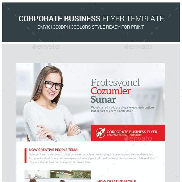 Multipurpose Corporate Business Flyers