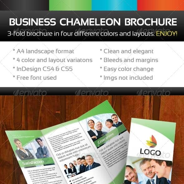 Chameleon Business Threefold Brochure