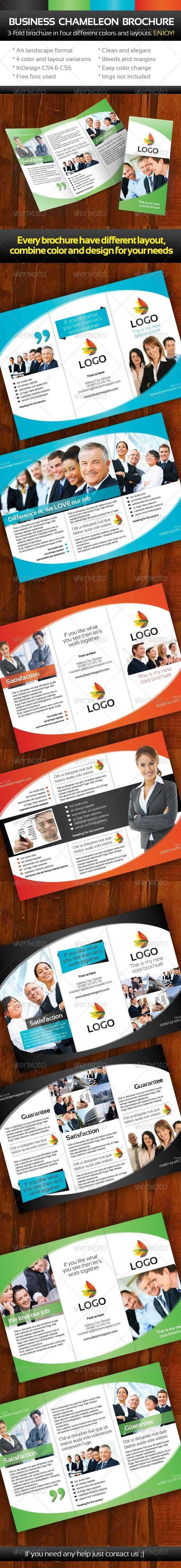 Chameleon Business Threefold Brochure - Corporate Brochures