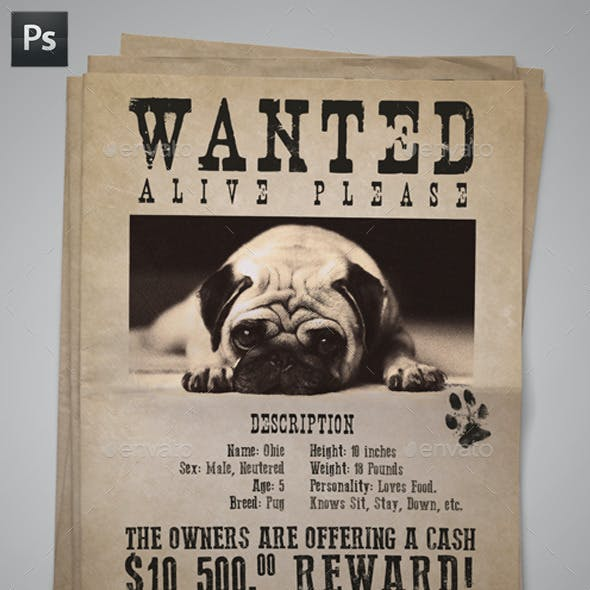 Wanted Lost Dog Flyer