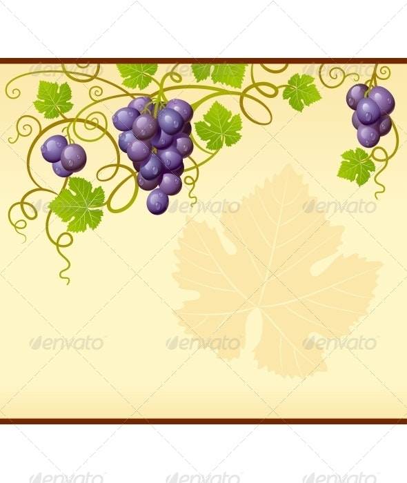 Vector grape frame - Borders Decorative