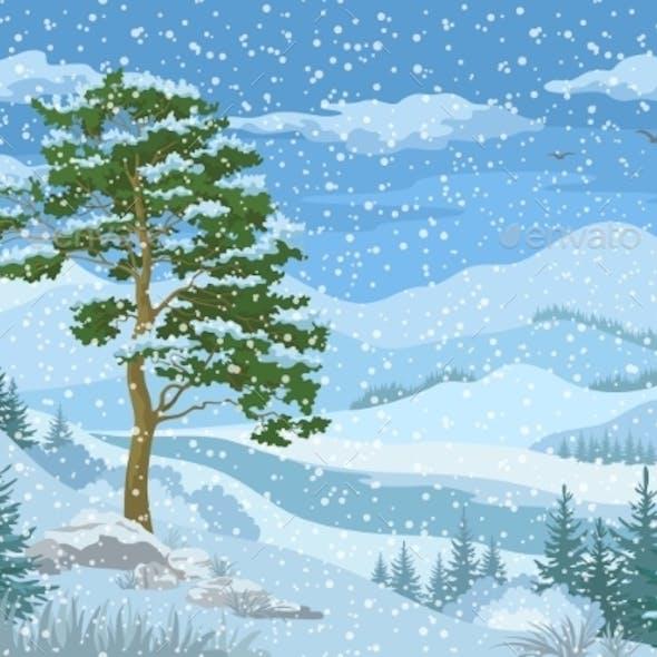 Mountain Winter Landscape