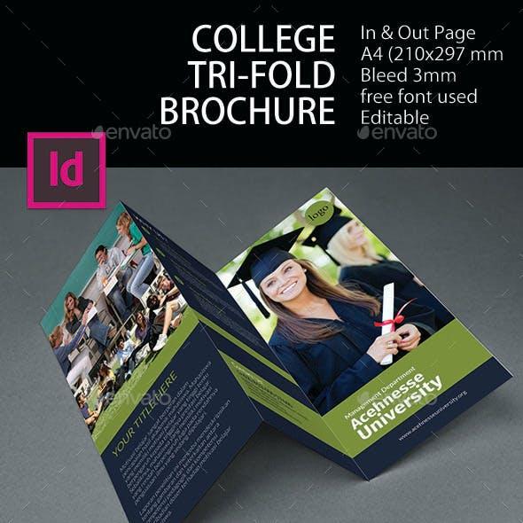 College Tri-Fold Brochure
