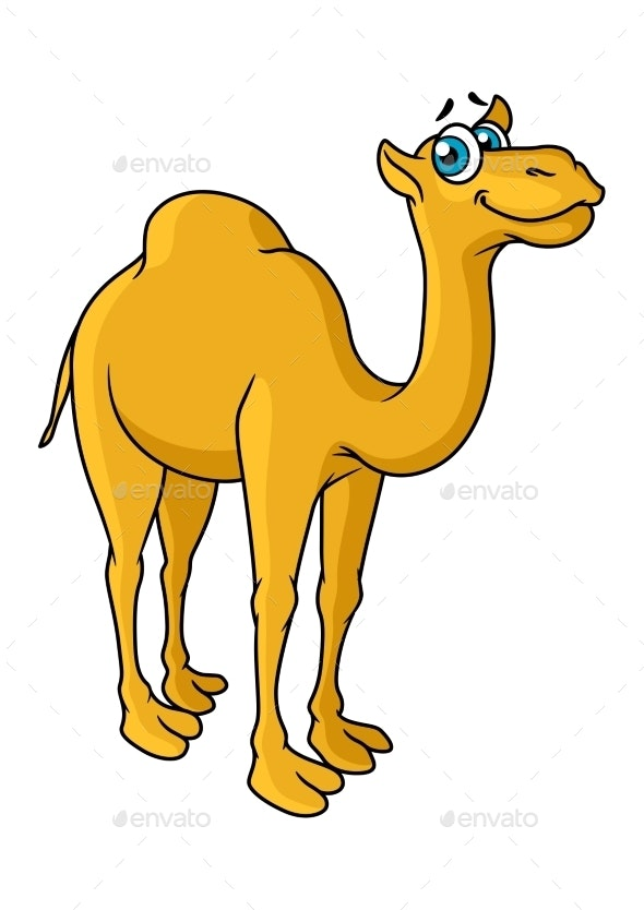 Cartoon Camel Animal Character By Vectortradition Graphicriver