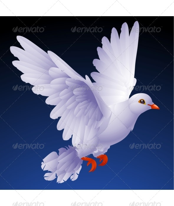 Vector white dove - Animals Characters