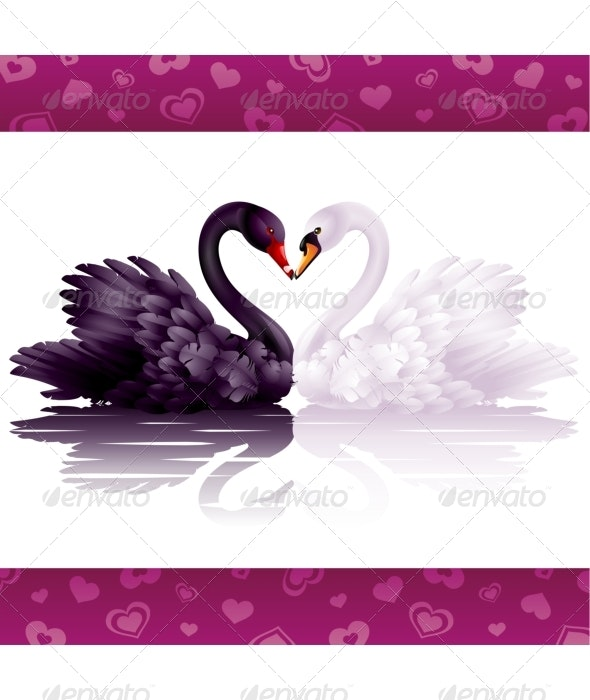 Two graceful swans in love - Borders Decorative