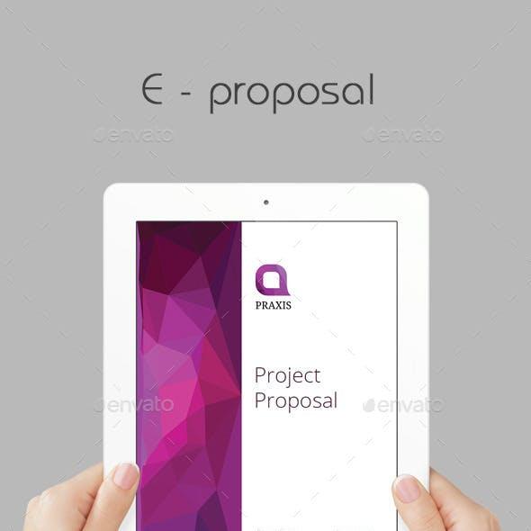 E - Proposal