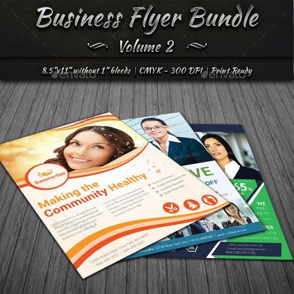 Business Flyer Bundle   Volume 2