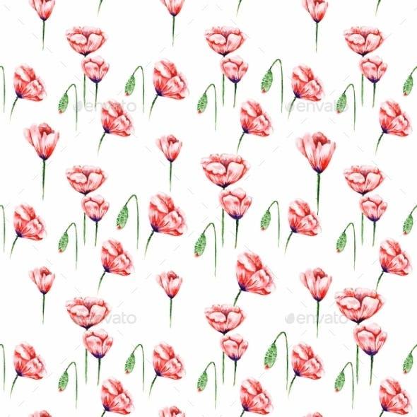 White Poppy Pattern