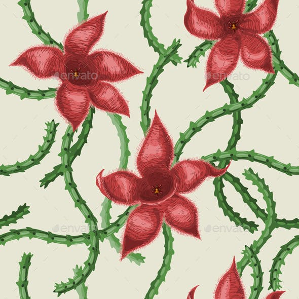 Stapelia Flowers Pattern